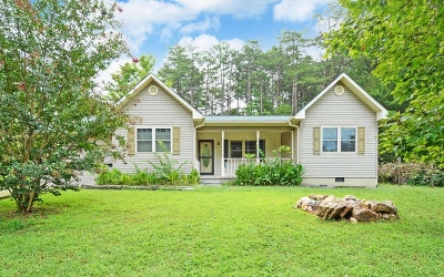 Blairsville Single Family Home For Sale: 241 12 Point Road