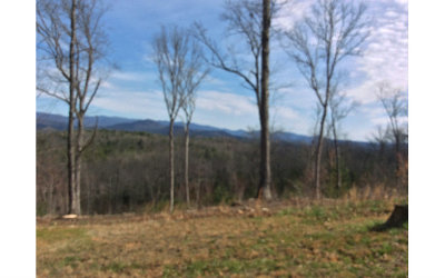 Murphy Residential Lots & Land For Sale: Lt 53 Hideaway Hills