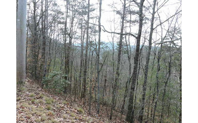 Murphy Residential Lots & Land For Sale: Lt 55 Hideaway Hills