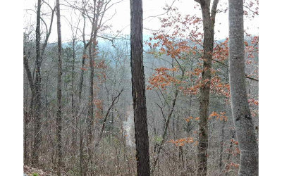 Murphy Residential Lots & Land For Sale: Lt 59 Hideaway Hills