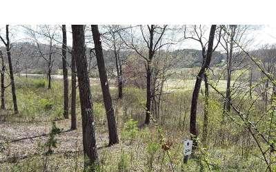 Blairsville Residential Lots & Land For Sale: Lt208 Owen Glen