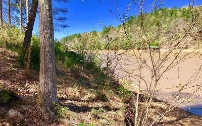 Blairsville Residential Lots & Land For Sale: Lt309 Thirteen Hundred