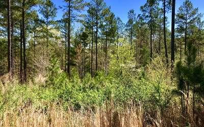 Blairsville Residential Lots & Land For Sale: Lt310 Thirteen Hundred
