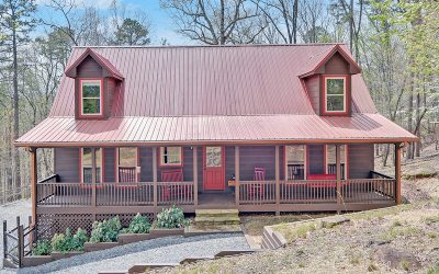 Ellijay Single Family Home For Sale: 1030 Palisade Drive