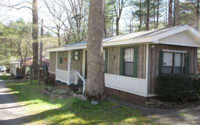Hiawassee Single Family Home For Sale: 27 Knowles Lane