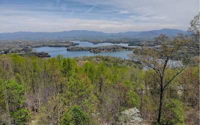 Hiawassee Single Family Home For Sale: 849 Frog Pond Rd