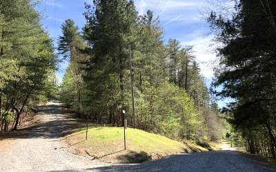 Mineral Bluff Residential Lots & Land For Sale: # 20 Sydney/Toccoa River
