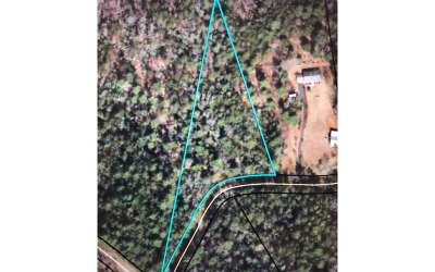 Blairsville Residential Lots & Land For Sale: 2.85 Mtn Lake Blvd