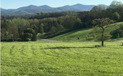 Blairsville Residential Lots & Land For Sale: Lt 32 The Arbor