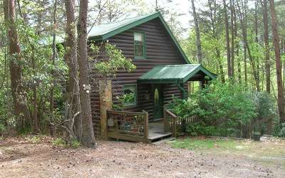 Blue Ridge Single Family Home For Sale: 70 Ridgeview Estates Rd
