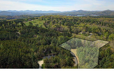 Blairsville Residential Lots & Land For Sale: Lot5 Creek Hollow Ln