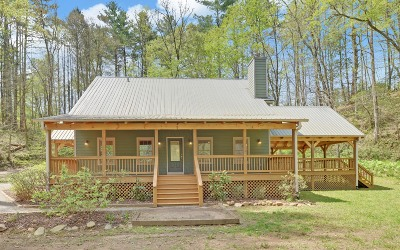 Hiawassee Single Family Home For Sale: 6294 State Highway 17s
