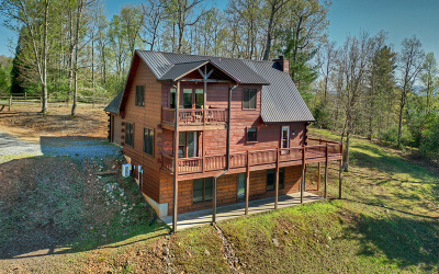 Blue Ridge Single Family Home For Sale: 214 Dillons Ridge Rd