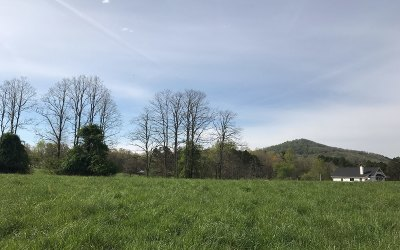 Blairsville Residential Lots & Land For Sale: Lt 13 Jewell Mason Overloo