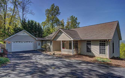 Blairsville Single Family Home For Sale: 160 Enotah Lane