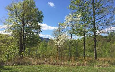 Hayesville Residential Lots & Land For Sale: L 26 Dan Knob