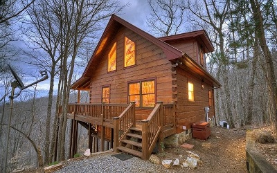 Blue Ridge Single Family Home For Sale: 917 Ripshin Mountain Rd