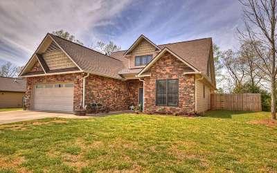 Blue Ridge Single Family Home For Sale: 96 Lindsey Lane