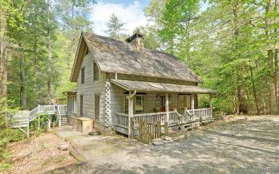 Ellijay Single Family Home For Sale: 41 River Bend Court