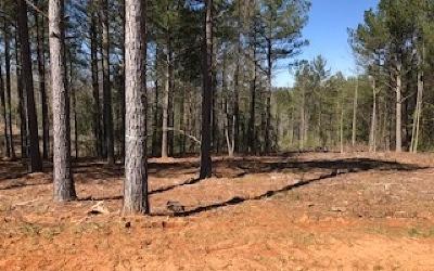 Blairsville Residential Lots & Land For Sale: Lt 24 Highland Park