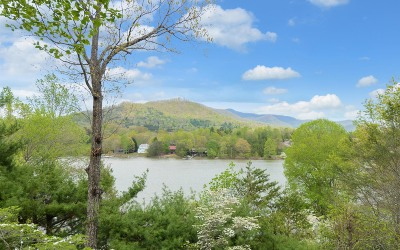 Hiawassee Single Family Home For Sale: 72 Windjammer Court