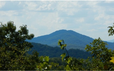 Hayesville Residential Lots & Land For Sale: 18 Trillium Heights