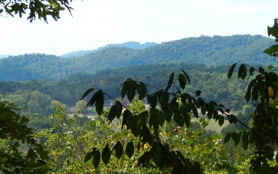 Hayesville Residential Lots & Land For Sale: 19 Trillium Heights