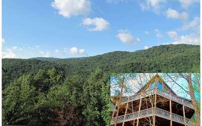 Blue Ridge Single Family Home For Sale: 350 Geronimo