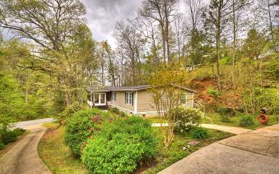 Ellijay Single Family Home For Sale: 3614 Tails Creek Rd.