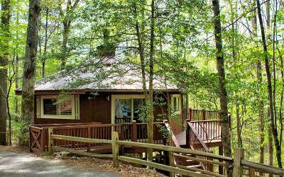 Ellijay Single Family Home For Sale: 297 Pine Ridge
