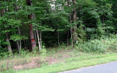 McCaysville Residential Lots & Land For Sale: Tr 2 West Pierceville Rd