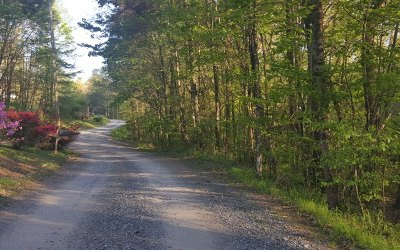 Mineral Bluff Residential Lots & Land For Sale: 23 Ac Hardscrabble Road