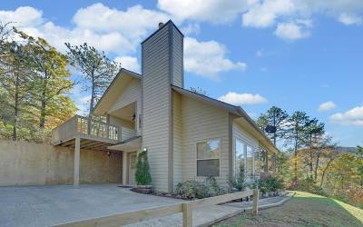 Hayesville Single Family Home For Sale: 164 Chestnut Ridge Drive