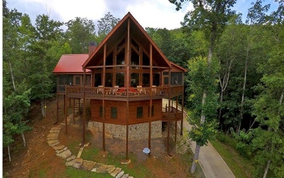 Blue Ridge Single Family Home For Sale: 479 Geronimo Rd