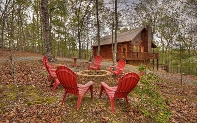 Mineral Bluff Single Family Home For Sale: 380 Copperhead Ridge