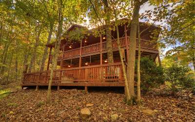 Blue Ridge Single Family Home For Sale: 593 Sunrise Valley Rd