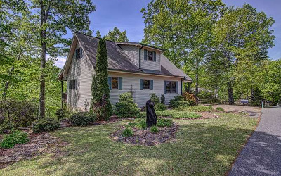 Blairsville Single Family Home For Sale: 199 Moon Shadow Trail