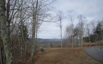 Blairsville Residential Lots & Land For Sale: L102 Thirteen Hundred