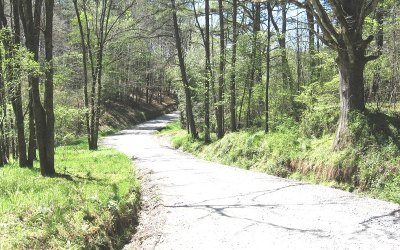 Mineral Bluff Residential Lots & Land For Sale: Old Loving Road