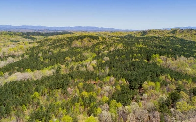 Ellijay Residential Lots & Land For Sale: 172ac Highway 382