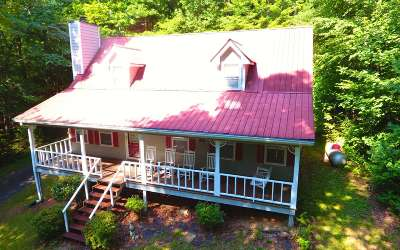 Hiawassee Single Family Home For Sale: 2101 Ivy Mountain Road