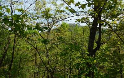 Brasstown Residential Lots & Land For Sale: Lt 23 Panther Trace