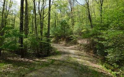 Brasstown Residential Lots & Land For Sale: Hidden Springs Drive
