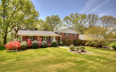 McCaysville Single Family Home For Sale: 205 Oak Drive