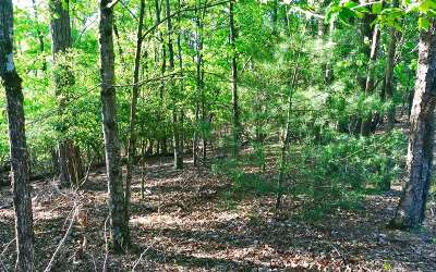 Ellijay Residential Lots & Land For Sale: 2219 Garfield Drive