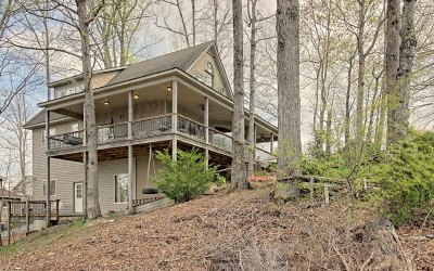Hiawassee Single Family Home For Sale: 1459 Harris Ridge