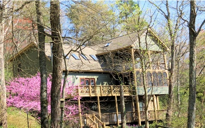 Ellijay Single Family Home For Sale: 1859 Laurel Trail