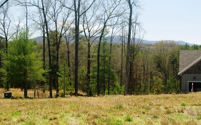 Mineral Bluff Residential Lots & Land For Sale: L 14c Old Toccoa Loop