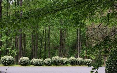 Young Harris Residential Lots & Land For Sale: Lt 65 Meadowbrook