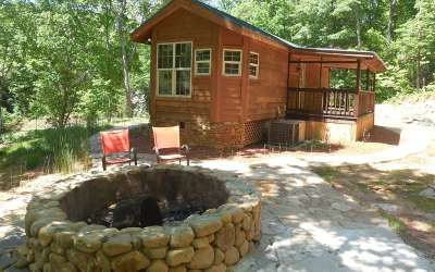 Blairsville Single Family Home For Sale: 798 Jonica Gap Road